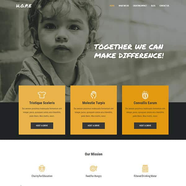 Charity Website Theme